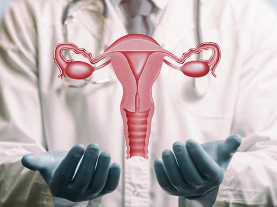 Transplante de útero