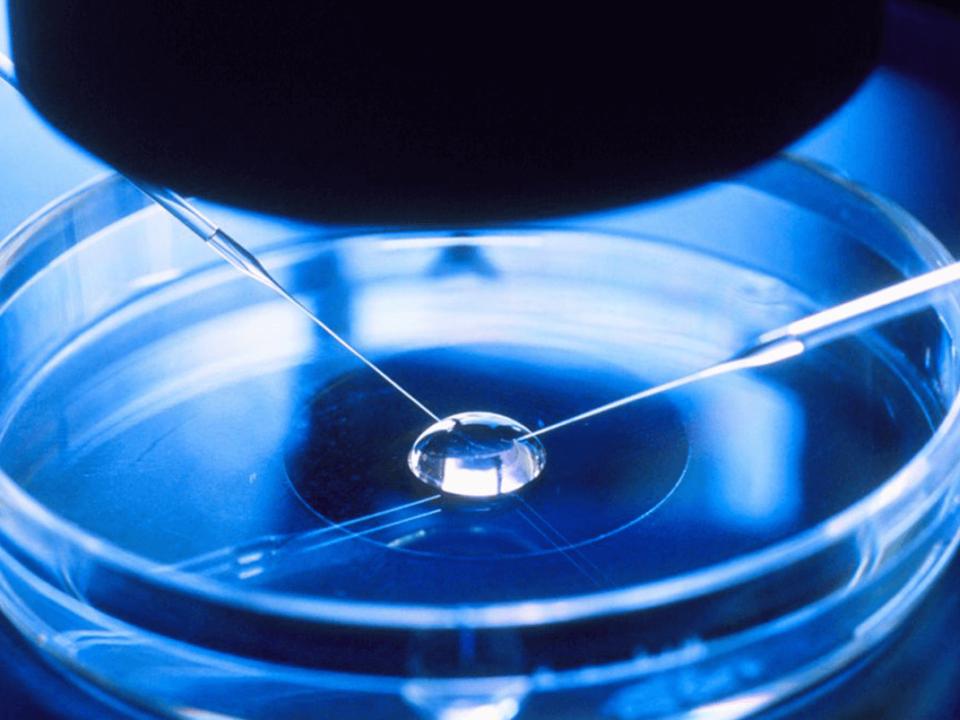 Ventajas de la fertilización in vitro